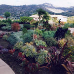 Poway 1 Garden - Photo 4 of 9