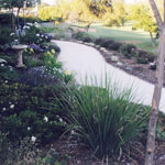 Rancho Bernardo 2 Garden - Photo 2 of 2