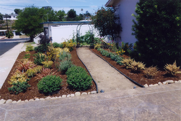 Project gallery living designs by linda for Low maintenance plants for garden beds